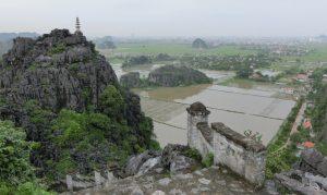Blick über die Reisfelder Richtung Ninh Binh