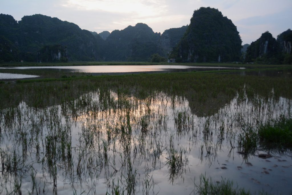 NI7 4828 https://blog.maiwolf.de/vietnam_ninh-binh/