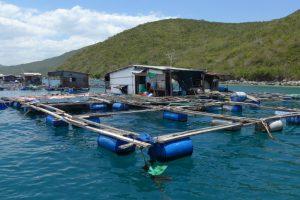 Bewohnte Fischfarmen