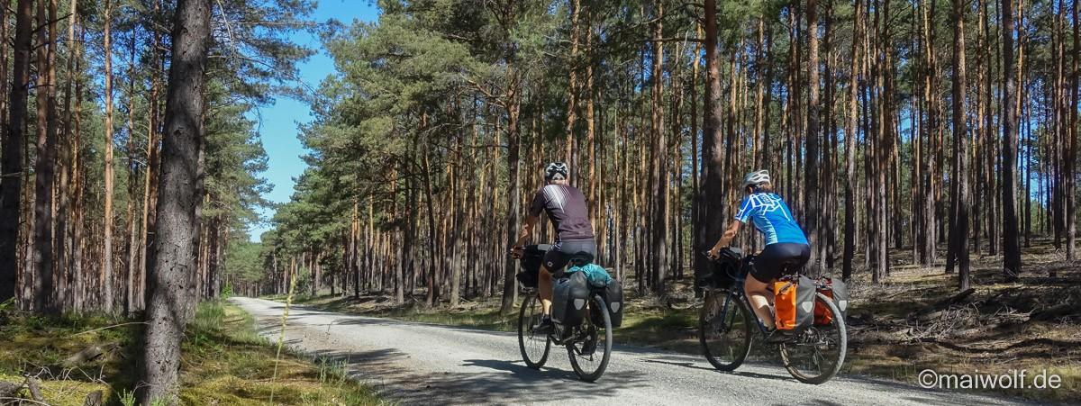 Bikepacking Trans Germany als Radtour